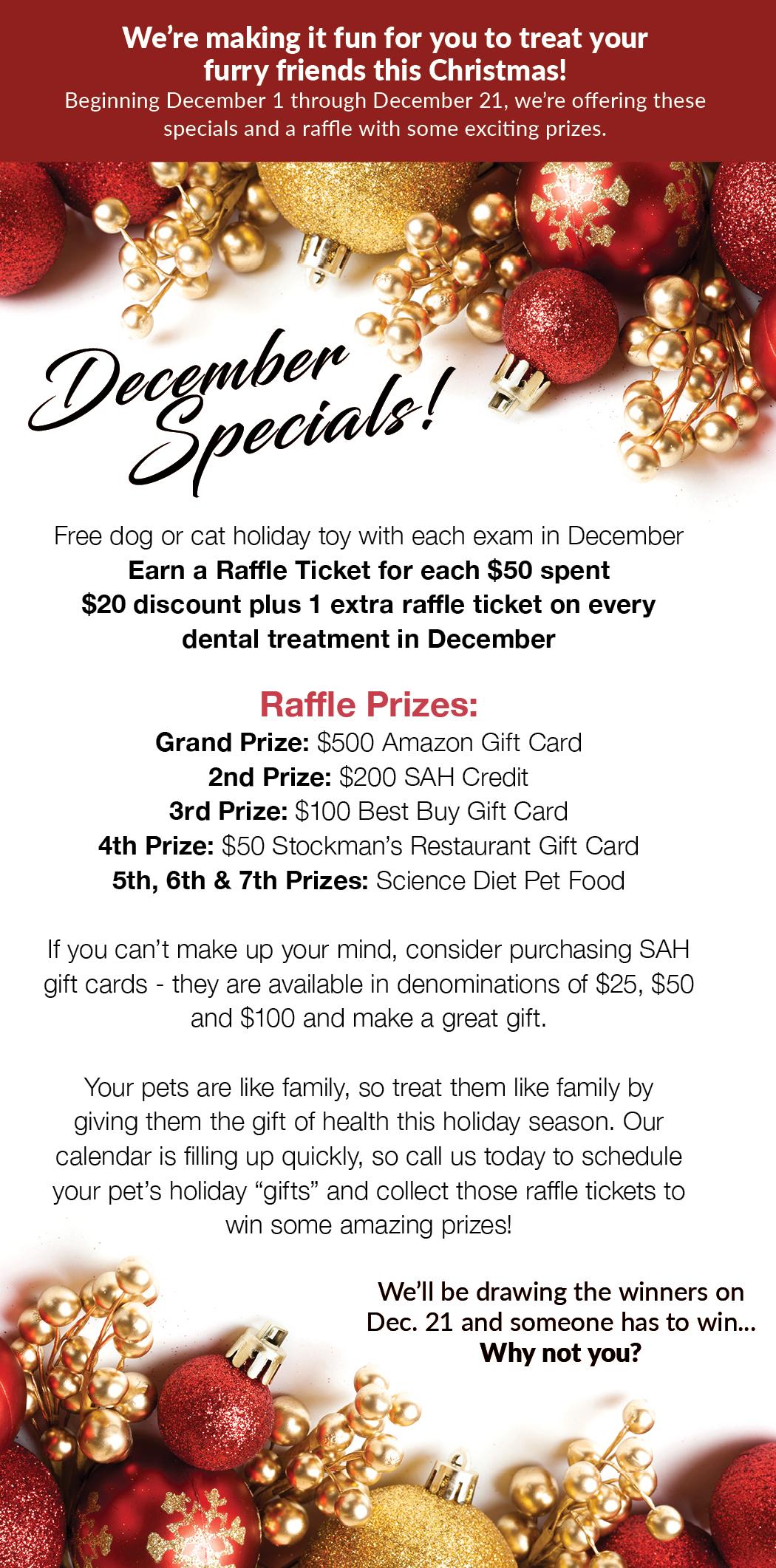 Dec-Skyline-Holiday-Raffle-img • Skyline Animal Hospital