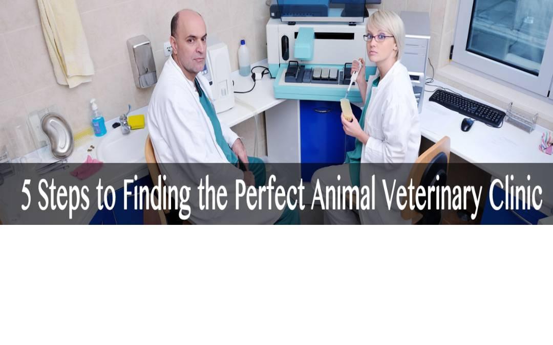 Animal Veterinary Clinic